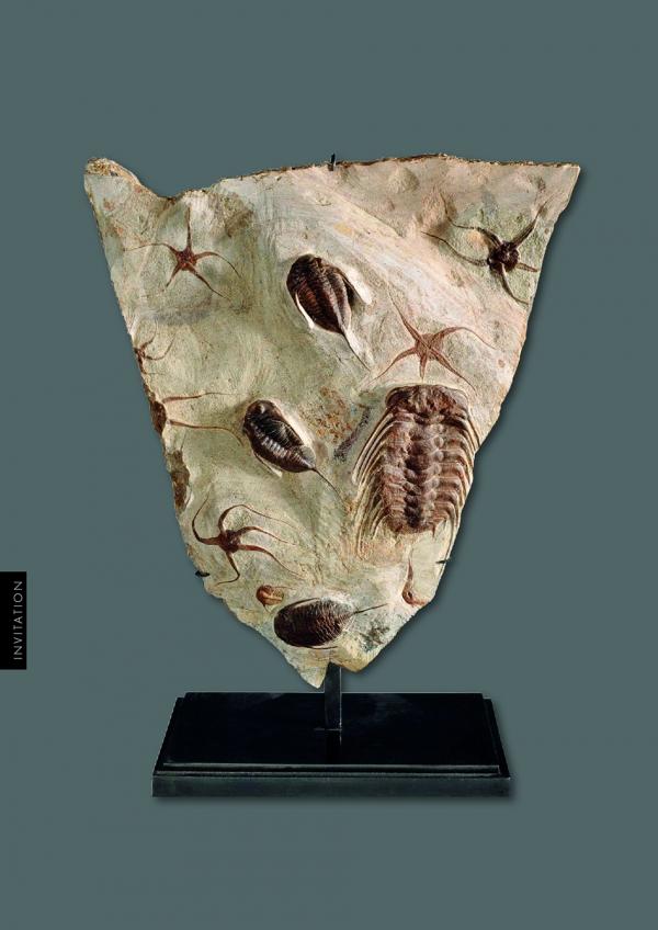 exposition,peintures,minéraux,fossiles,collections,privées,chédigny,alain,plouvier